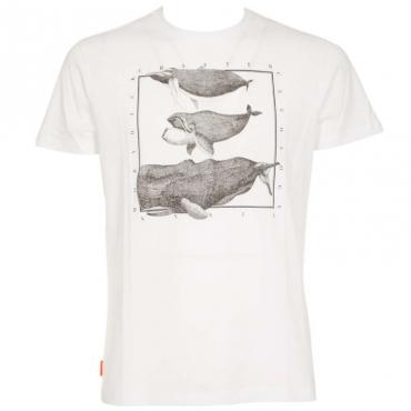 T-Shirt Shirty Cetology bianca con stampa 09BIANCO