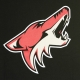 MAGLIETTA NHL ICONIC PRIMARY COLOUR LOGO GRAPHIC T-SHIRT ARICOY ORIGINAL TEAM COLORS